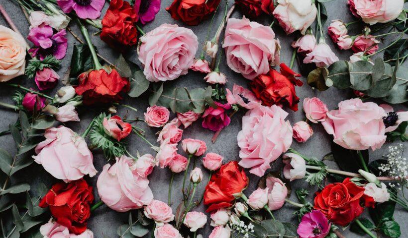 Send flowers to Rawalpindi