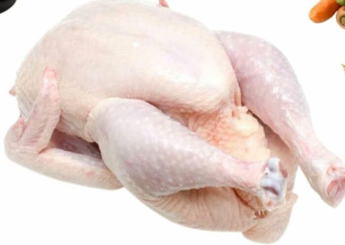 Free-Range Chicken halal