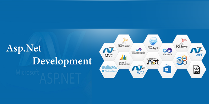 HireAsp.Net, HireAsp.Net Develper